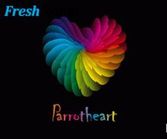 thiet ke logo hinh trai tim 14